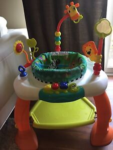 Baby Activity Bouncy Chair - Like New!!