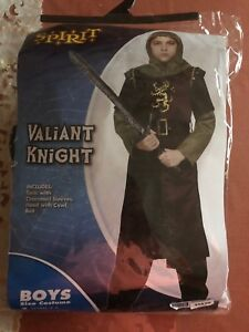 Valiant Knight HALLOWEEN Costume  MINT CONDITION