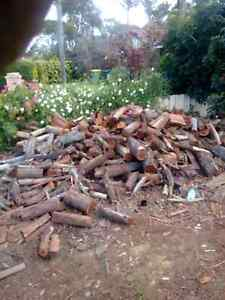 Discounted FIREWOOD Eden Hill Bassendean Area Preview
