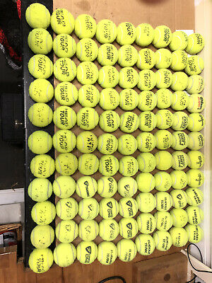 10 Used Tennis Balls For Dogs Or Rec Play / Ball Games Head Babolat Wilson