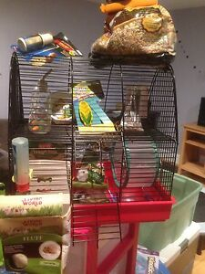 Kit a hamster complet il vous manque juste le hamster