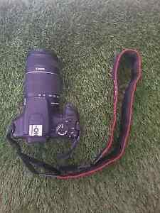 Canon 1000D Mooloolaba Maroochydore Area Preview