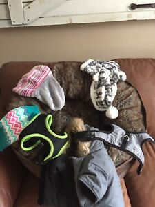 Small dog bed and accessories
