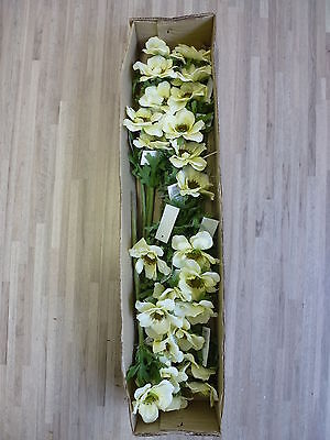 24 x Anemone 24tlg Set Seidenblume Kunstblume Kunstpflanze creme gelb 181815 F62