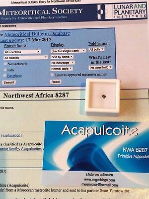 METEORITE ACAPULCOITE NWA 8287 micro fragment