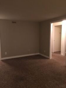 2 Bedroom basement apartment for rent in Manuals, CBS