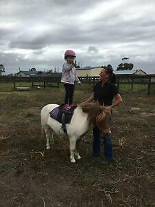 Horse Riding Lessons Koo Wee Rup Cardinia Area Preview