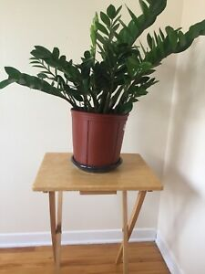 Small folding side table