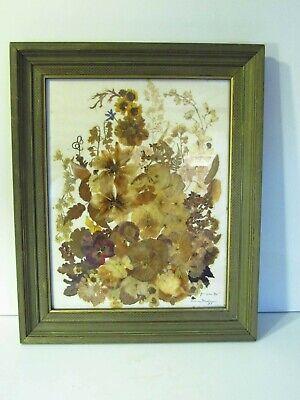 ARTIST SIGNED PRESSED WILDFLOWERS - FRAMED UNDER GLASS - SERENA FRIEDMAN '77
