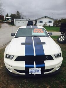2007 Shelby Mustang