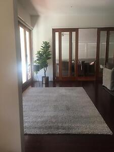 Luxurious ash grey floor rug New Farm Brisbane North East Preview