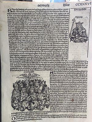 PISA Concilio,Schedel 1493 Nürnberger Chronik FOLIO CCXXXVII NUREMBERG
