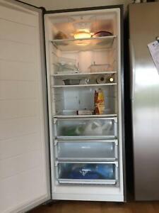 Westinghouse freezer