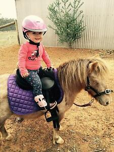 Pop up pony parties Northam Northam Area Preview