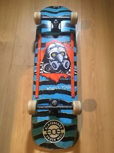 Skateboard powell cruiser avec ACE trucks