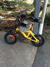 Motorised Bicycle Tyabb Mornington Peninsula Preview