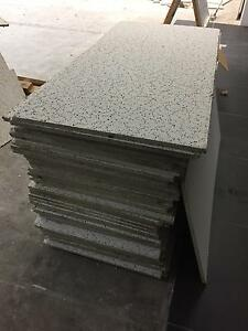 Ceiling roof tiles Newstead Launceston Area Preview