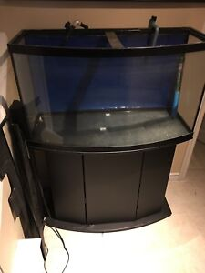 Bowfront Aquarium with stand and accessories.