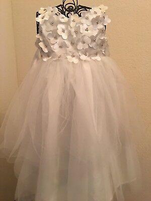 NWT Biscotti Girls' Flower Girl Dress Size 2T](Biscotti Flower Girl Dresses)