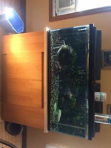55 gallon Fish tank set up and cabinet