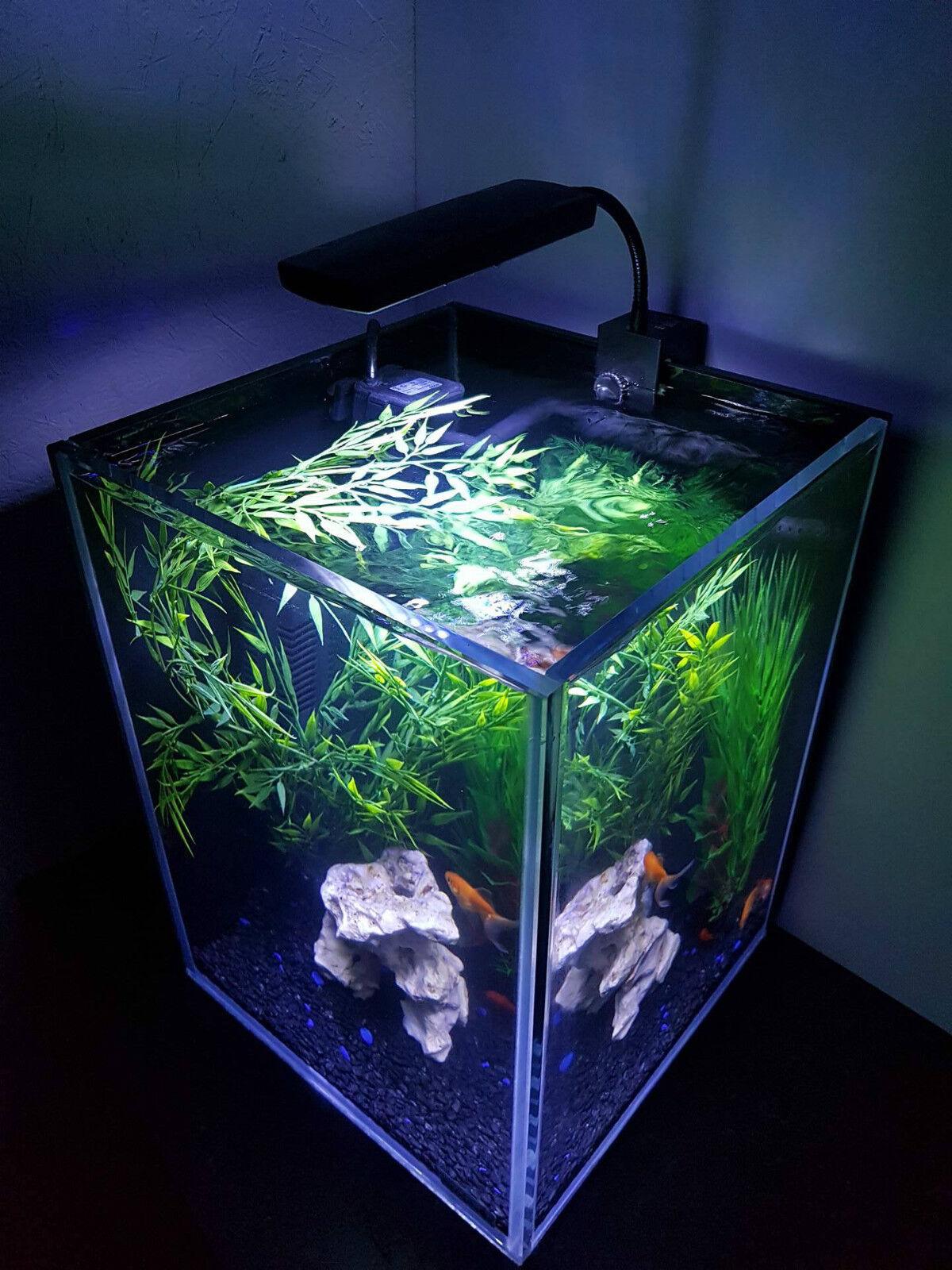 Aquarium nano fish tank 30 litre complete with led light for Aquarium 30 litres