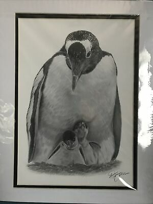 Pencil Drawing Penguin With Chicks By Gary Tymon