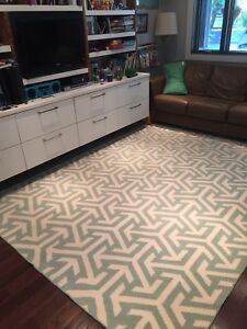Crate and Barrel Area Rug