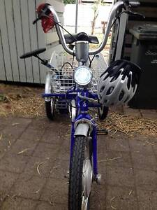 Electric Bicycle Company Adult tricycle Port Melbourne Port Phillip Preview