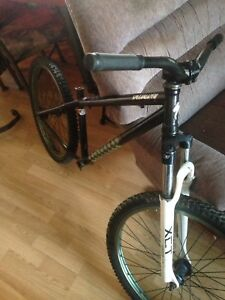 Dirt jumper specialized p1