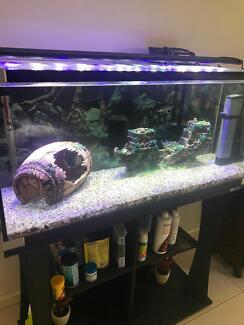 🐟Aqua One 3ft Aquarium with Stand🐟