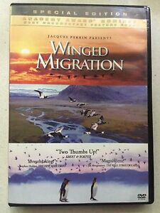 Winged migration DVD Elanora Gold Coast South Preview