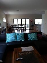 woolloongabba room for rent Woolloongabba Brisbane South West Preview