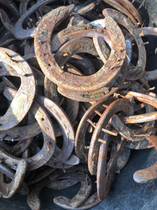 50 Used Rusty Steel Horseshoes-Western Decor Cowboy Welding