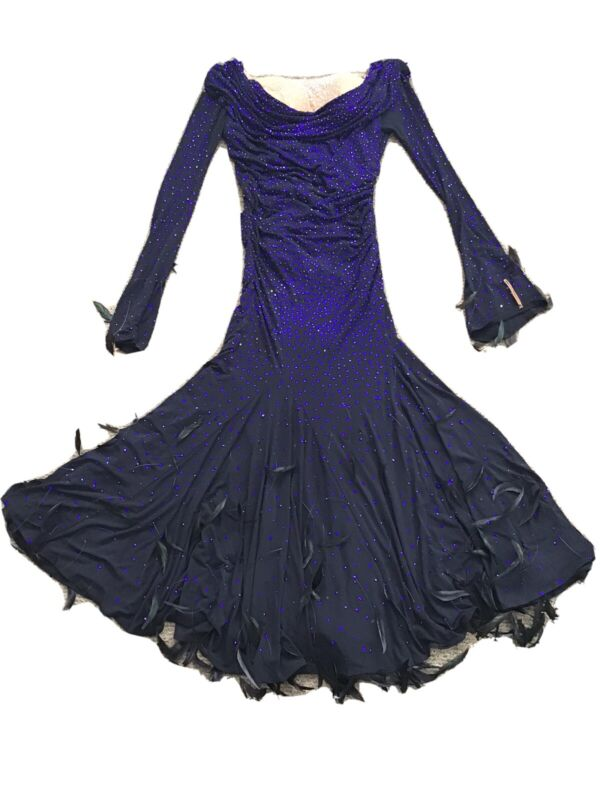 Chrisanne Couture Black And Blue Ballroom Dance Dress, Feather Accent, Size 6