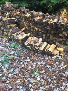 Dry softwood cut and split