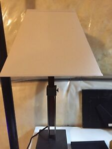 Contemporary lamps (floor and side table)