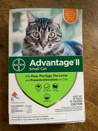 Advantage II Small Cat 6-Pack Flea Lice Larvae Topical Treatment Bayer