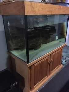 "4x2x28"" glass fish tank Jimboomba Logan Area Preview"