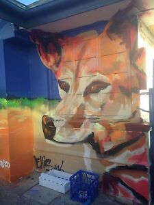*Free* mural artist paints all QLD Mackay Mackay City Preview