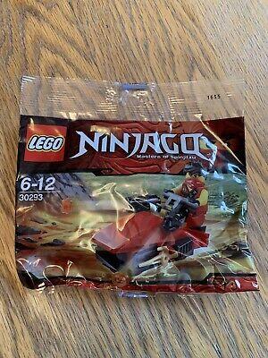 Lego Ninjago Masters Of The Spinjitzu Polybag 30293