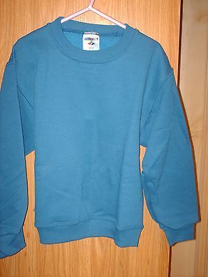 Youth Kids Sweatshirt Royal Blue Small Medium Large