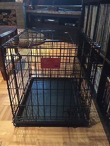 Dog cage for small dogs