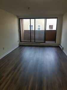 LOVELY/ SPACIOUS  BACHELOR APT NORTH END APRIL 1ST