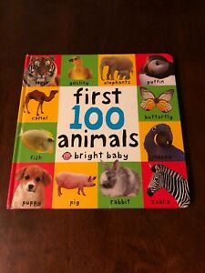 Large 100 First Animals Board book