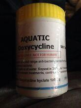 Aquatic doxycycline 100mg (500 tablets) Baulkham Hills The Hills District Preview
