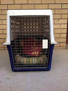 pet travel cage for flights Southport Gold Coast City Preview