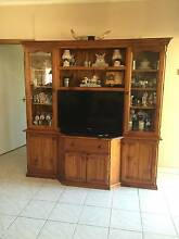 TV Entertainment Unit Seven Hills Blacktown Area Preview
