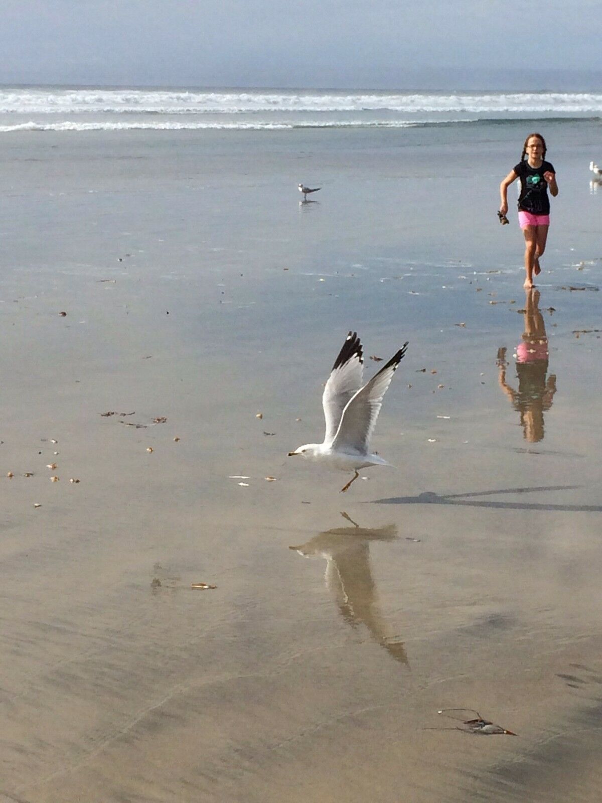 Ready Goods Company