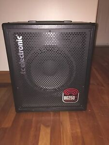 TC Electronic 250 Watt Bass Combo Amp