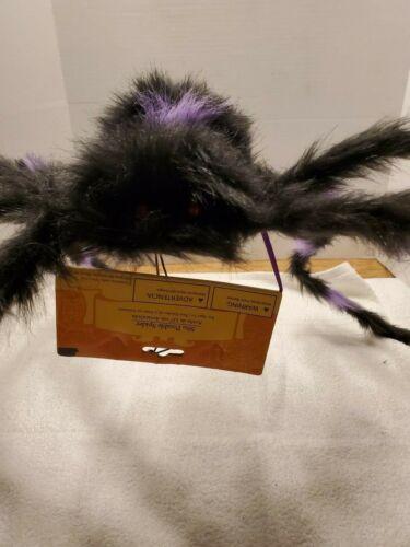 2 Halloween Spiders